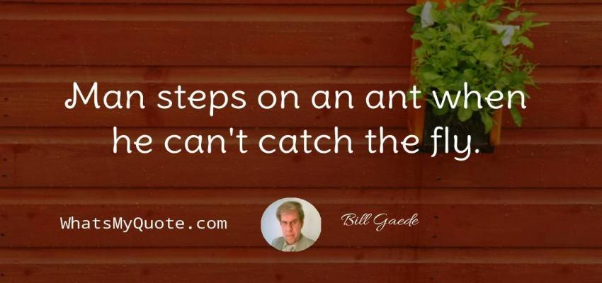 Bill Gaede quotes